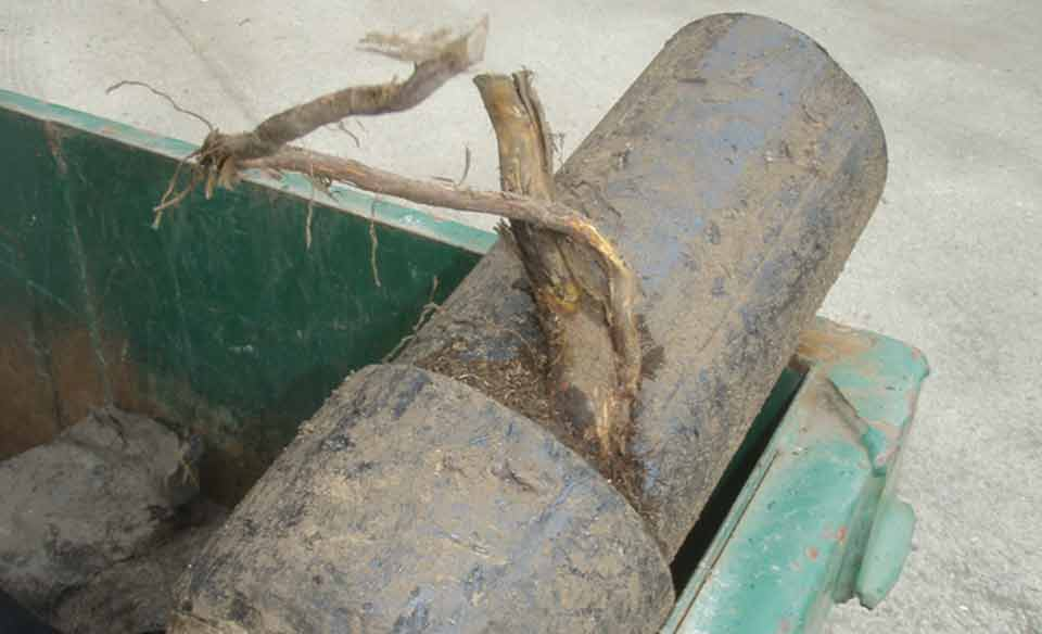 Root entry into joint of no corrode pipe