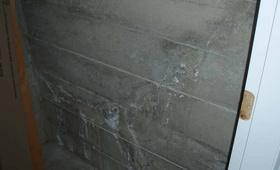 Crack in foundation - old water entry